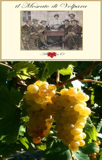 cantina vino moscato di volpara