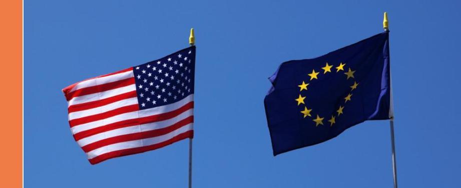 Trattato Transatlantico commercio estero e investimenti