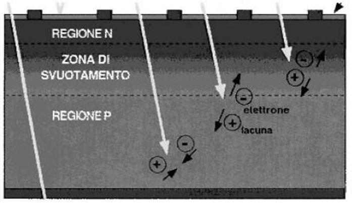 fotovoltaico sezione di una cella fotovoltaica PV