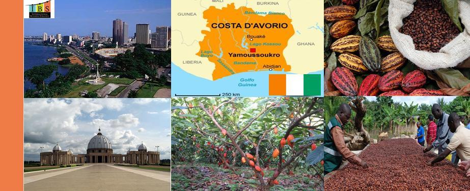 Cacao Costa D'Avorio grezzo in semi da macinare