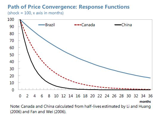 Brazil - Path of Price Convergence, Response Functions