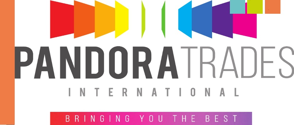 Pandora Trades International B2B logo