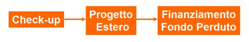 check-up progetto estero e finanziamento IBS International Business Strategy Limited