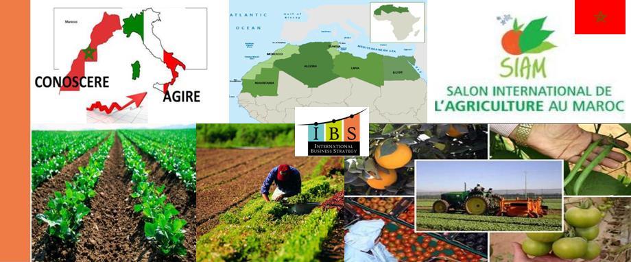 Missione in Marocco in occasione della Fiera Agricoltura e Allevamento SIAM a Meknes