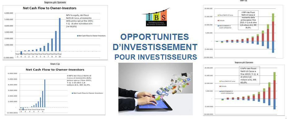 Opportunites D Investissement pour Investisseurs