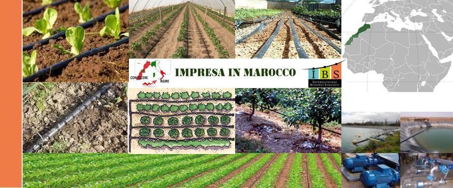 Irrigazione goccia goccia fiere e missione commerciale marocco