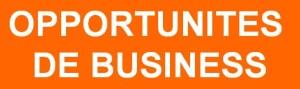 opportunites de business