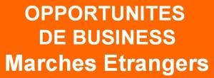 opportunites de business marches etrangers