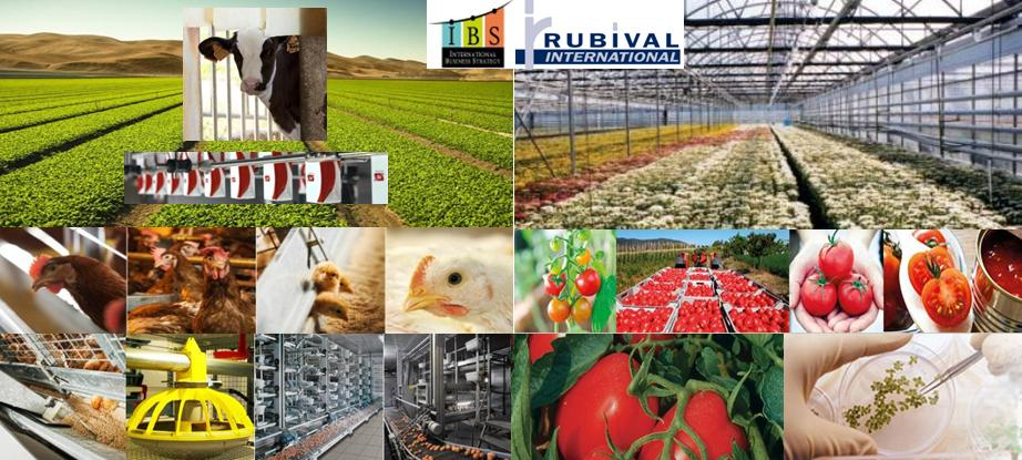 agribusiness filiere e agrifood