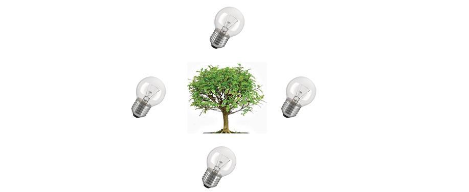 Innovazioni per ambiente e strategie