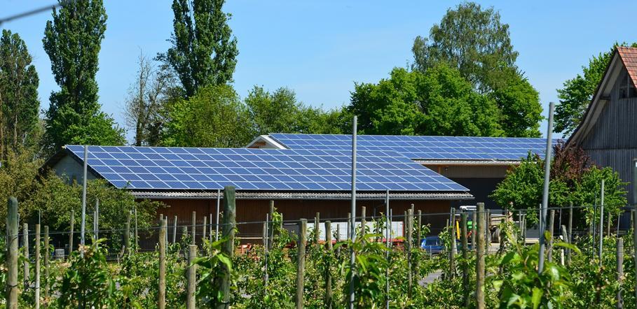 Tetti agricoli 1 fotovoltaico