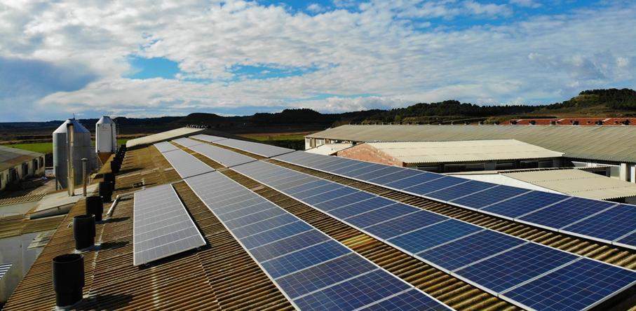 Tetti coperture industriali 2 fotovoltaico