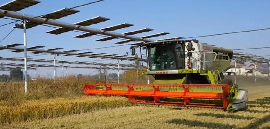 Agrovoltaico Fotovoltaico Terreni Agricoli