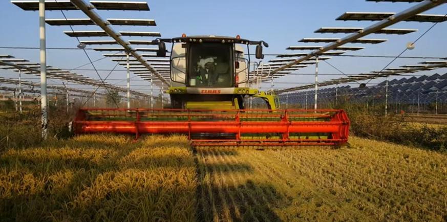 Agrovoltaico Fotovoltaico Terreni FV sviluppo